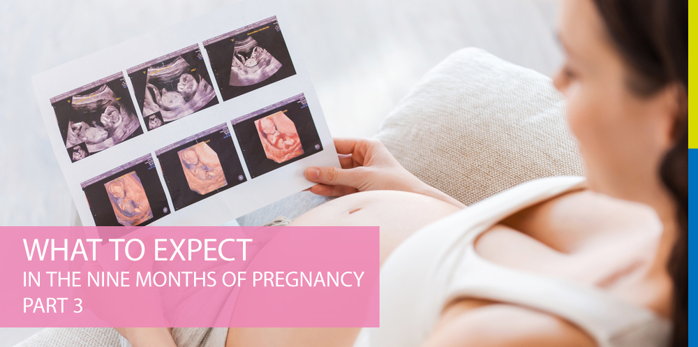 What to Expect In the Nine Months of Pregnancy Part 3
